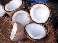 Noix de coco.