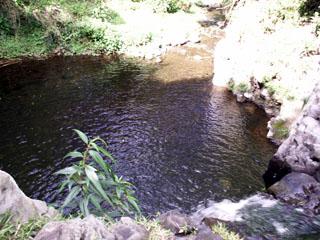 Randonnée sentier Bassin Sassa Entre-Deux La Réunion.