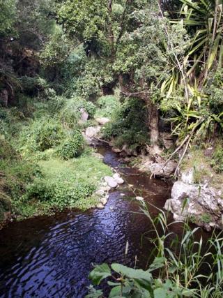 Randonnée sentier Bassin Sassa Entre-Deux.