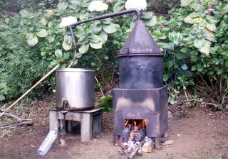 Alambic. Distillation du Géranium Rosat.