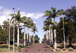 Parc boisé Ville du Port La Réunion..