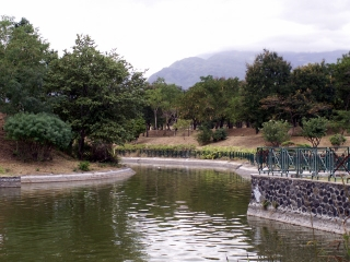 Parc boisé Ville du Port.
