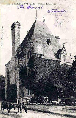 Château de Bodinio