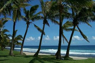 Photo de la plage de Grande Anse à La Réunion