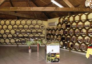 Maison de l'abeille à Petite-île La Réunion
