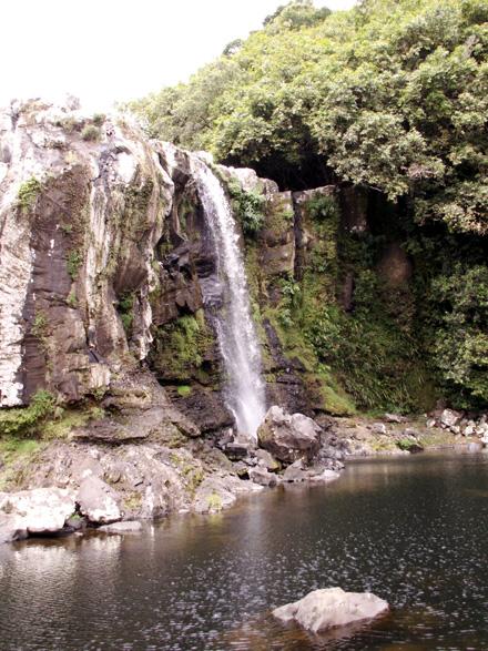 Bassin Nicol Sainte-Suzanne La Réunion
