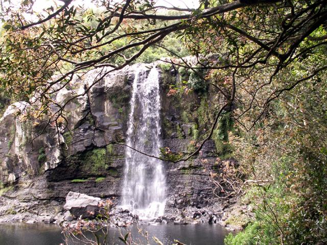 Bassin Nicol et sa cascade Sainte-Suzanne