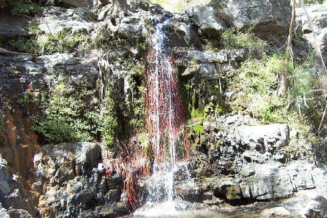 Randonnée Cascade de Bras Rouge
