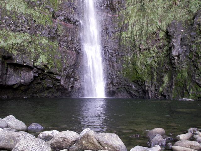 Cascade Biberon Plaine des Palmistes île de La Réunion