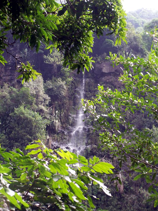 Randonnée les Gorges Arche Naturelle cascade Bras de la Plaine
