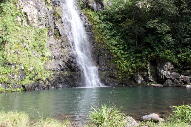 Cascade Maniquet et bassin La Réunion