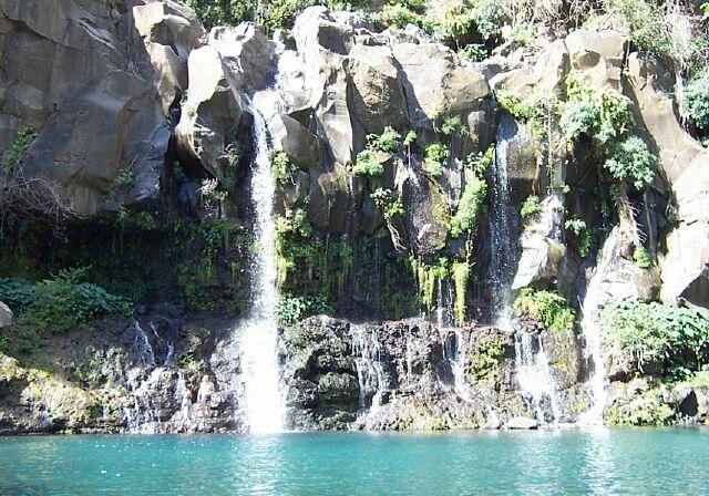 Bassins des Cormorans et Aigrettes