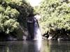 Cascade du Bassin Boeuf La Réunion