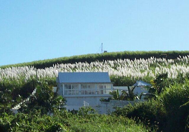 Case créole Petite-île. Réunion