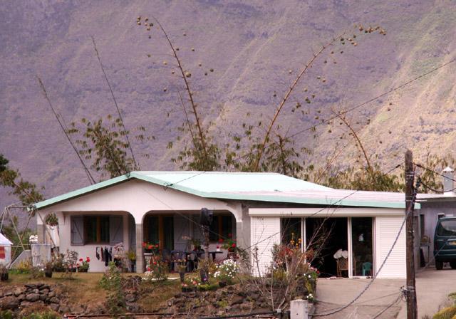 Case Dos d'Ane île de La Réunion