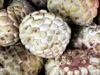Zatte fruit du Attier ou pommier cannelle. Annona squamosa