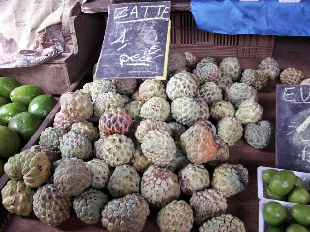 Attier ou pommier cannelle. Fruit : atte, pomme cannelle, zatte. Annona squamosa