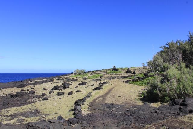 Sentier du Cap Jaune La Réunion.