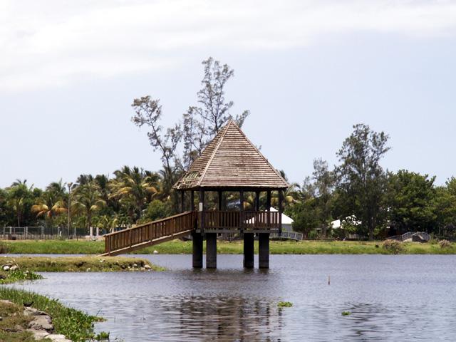 étang du Gol Saint-Louis La Réunion