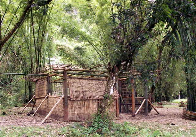 Abrit bambous îlet Bethléem Saint-Benoît