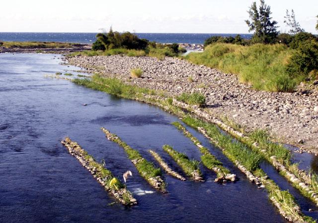 Canaux pour la pêche aux bichiques Rivière des Marsouins