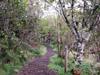 Sentier botanique de Notre Dame de La Paix