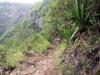 Randonnée les Gorges Arche Naturelle Bras de la Plaine
