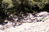 Sentier randonnée Bassin Boeuf La Réunion