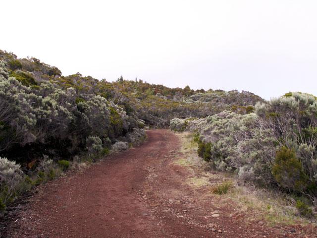 Sentier du Piton de l'Eau