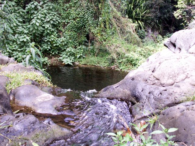 Sentier Bassin Sassa Randonnée Entre-Deux La Réunion