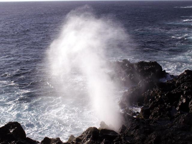 Souffleur Saint-Leu La Réunion