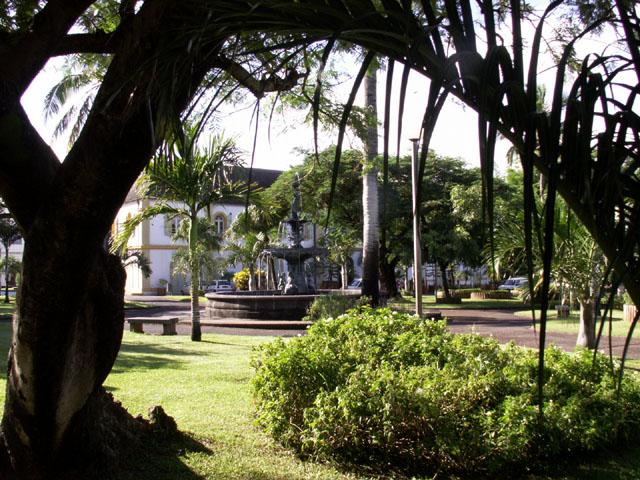 Jardin h tel de ville de saint pierre le de la r union for Entretien jardin ile de la reunion