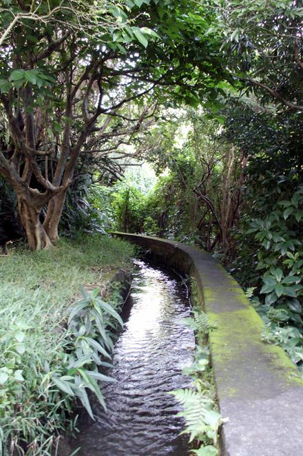 Canal ancienne usine sucrière de Langevin