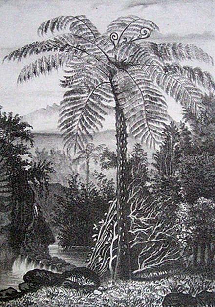 Fanjan Album de La Réunion Antoine Roussin