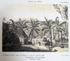Quartier Sainte-Suzanne sucrerie