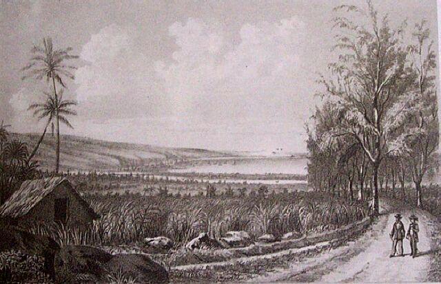Saint-Paul, la rade. Album de La Réunion. Antoine Roussin.