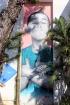 Graff à Saint-Pierre, Graffeur Méo