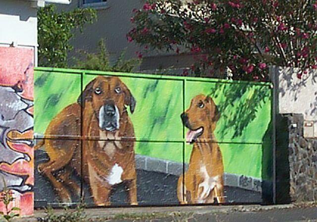 Graffiti Tag à l'Hermitage La Réunion