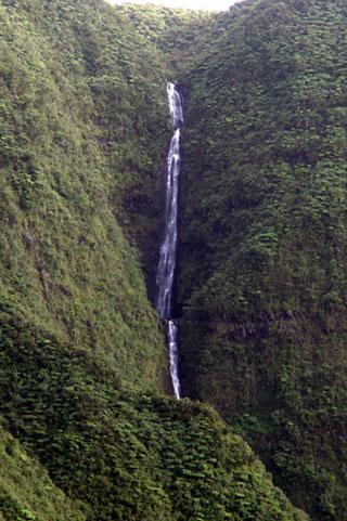 Cascade Biberon Plaine des Palmistes.