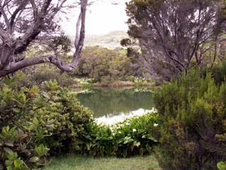 étang du Piton de L'Eau.