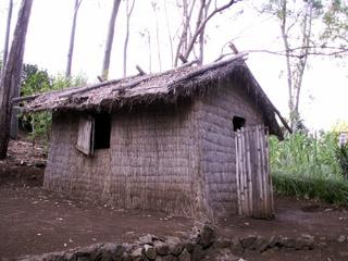 Paillote habitation des exil s et des colons et des for Modele maison bourbon bois reunion