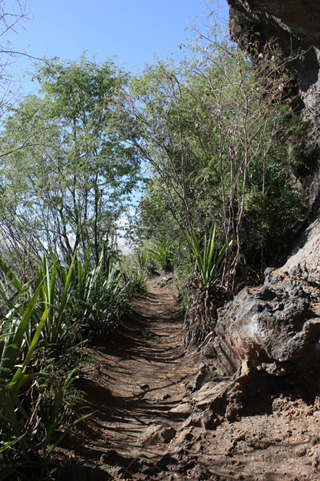 Randonnée La Réunion.
