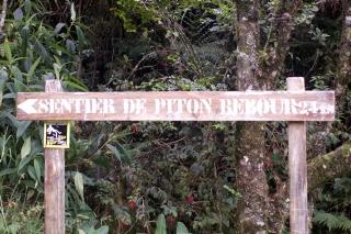 Sentier du Piton Bébour.