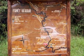 Sentier du Piton Bébour Plaine des Palmistes La Réunion.