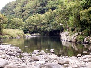Rivière des Marsouins.