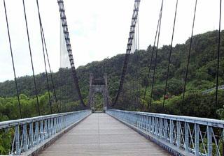 Photo pont suspendu de La Rivière de l'Est