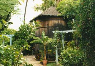 Le Jardin D Eden Saint Gilles