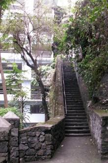 Escalier Ti quat sous quartier de La Rivière à Saint-Denis La Réunion.